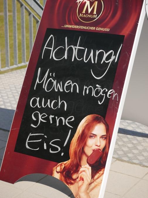 Moewen_moegen_auch_Eis